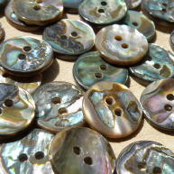 Face of Abalone shell buttons