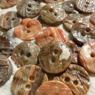 Face of Awabi shell buttons