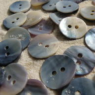 Face of Blue Mussel shell buttons