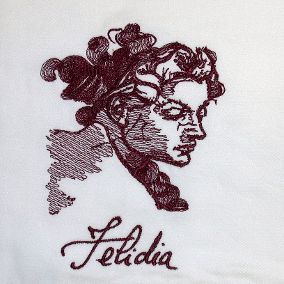 High quality embroidery digitizing