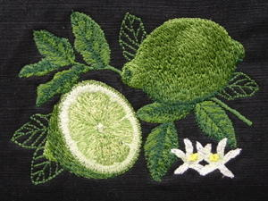 Close up of embroidered Lime Botanical, shown on 100% cotton ripstop.